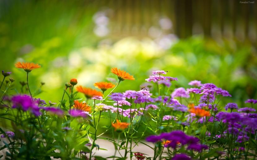 Preparar el jardín para laprimavera.